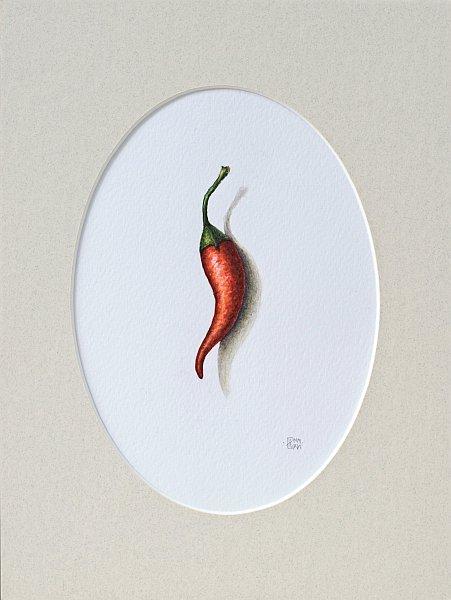 Iskren Semkov- Object-Hot Pepper-24x18