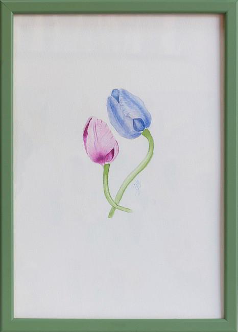TZVETELINA-Botanica-aquarelle-01-framed