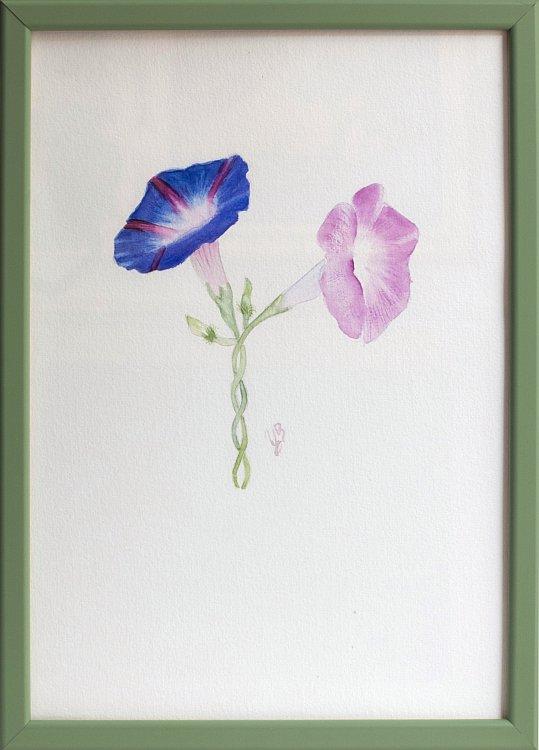 Tsvetelina-Botanica-02-framed