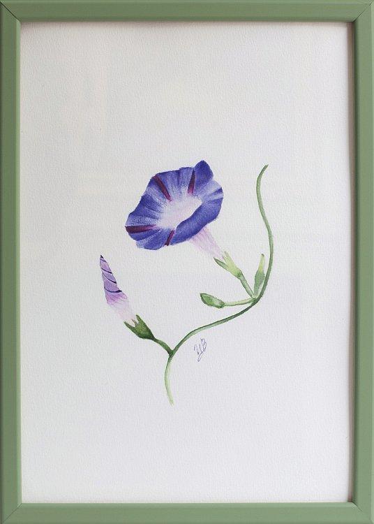Tsvetelina-Botanica-04-framed