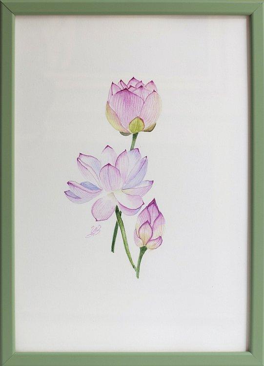 Tsvetelina-Botanica-05-framed